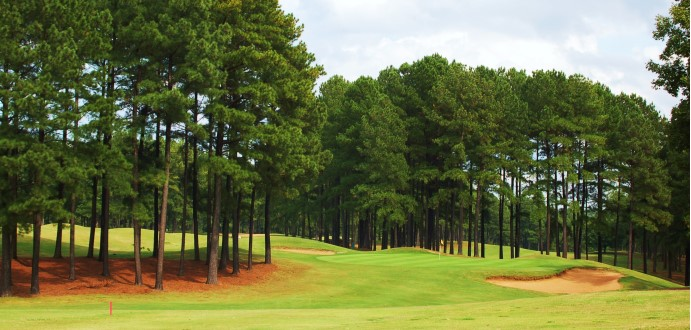 Caswell Pines3