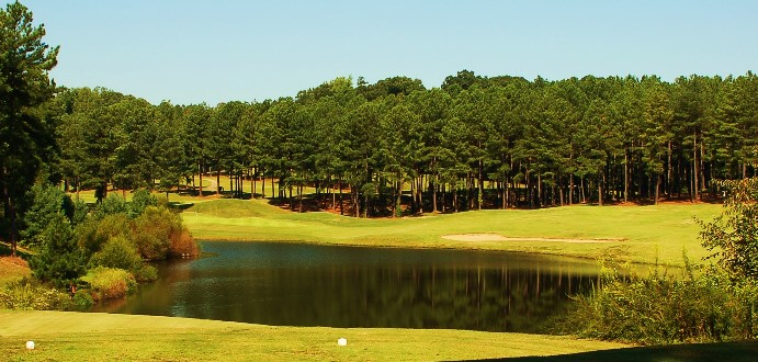 Caswell Pines13