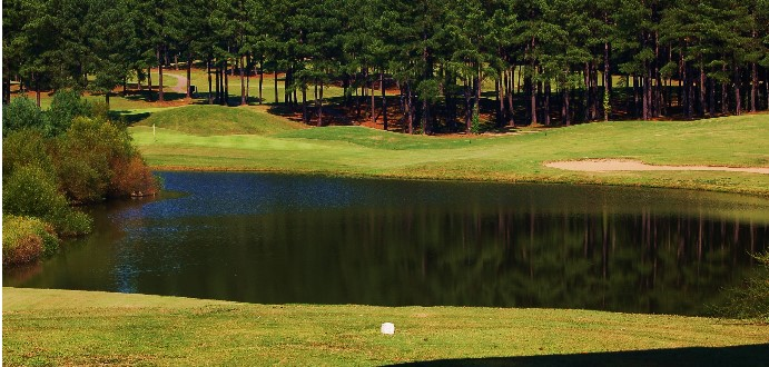 Caswell Pines6